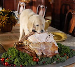 dog-eating-christmas-turkey.jpg