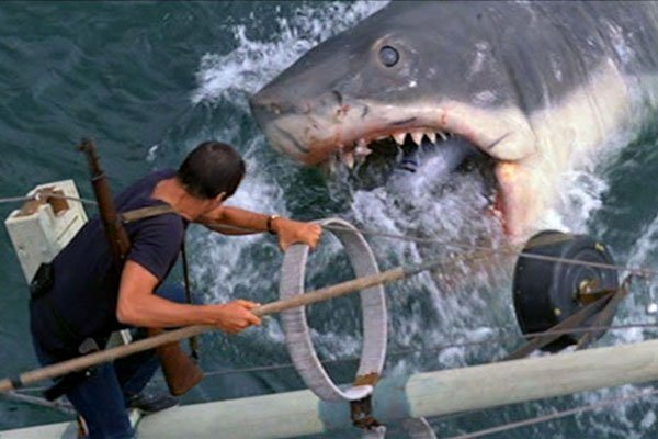 jaws-facts6.jpg